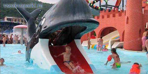 Развлечения для детей в Дельфине