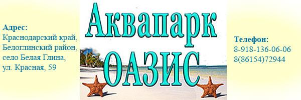 Визитка аквапарка Оазис